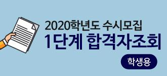 2020susi001.jpg
