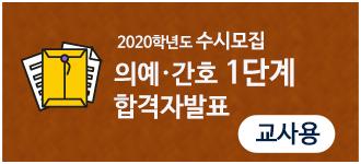 2020susi006.png